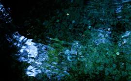 자연이야기-流2 Tale of nature-flow