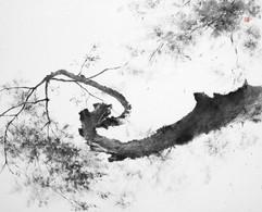 145.5×112cm, 2011 한지에 수묵 Muk on korean paper
