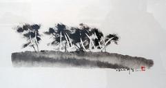 남도의 바람 South island's wind