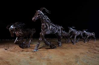 Wind typhoon - Horse