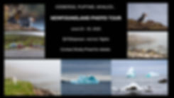 Newfoundland Promo 2 - Sheet1.jpg