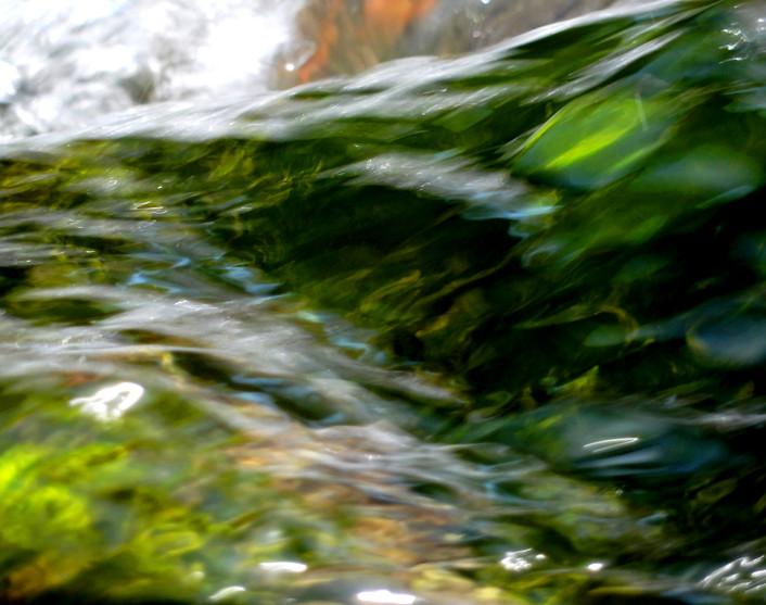 Flow VII