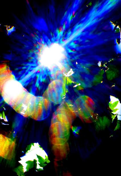 blue1090506 copy_edited.jpg
