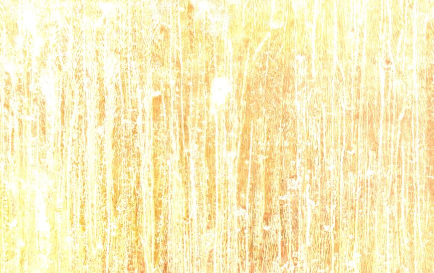 Copy of P1180888_edited.jpg