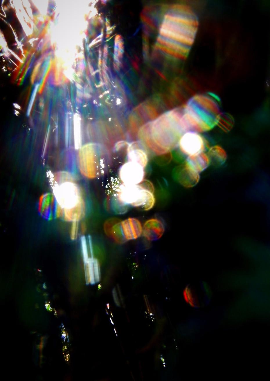 DARK A3 2_edited_edited.jpg