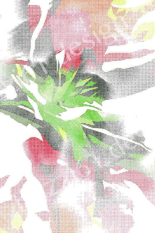 floral matrix