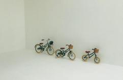 Kids Bicycles Shoot