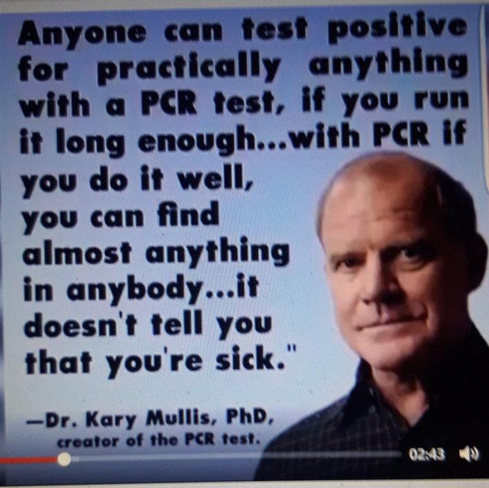 Dr Kary Mullis, PCR tests.jpg