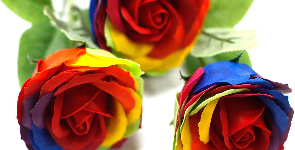 Rainbow Single Stem Rose
