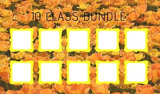 10 Class Bundle Back.png