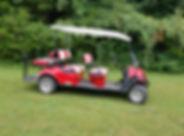 6 Passenger Golf Cart.jpg