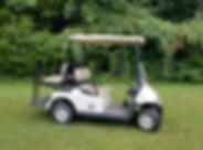 4 Passenger Golf Cart.jpg