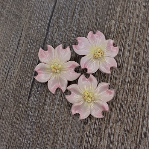 Pink Dogwood Buttons