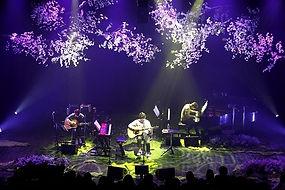 콘서트 사진.jpg