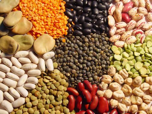 ¿Las legumbres son proteínas?