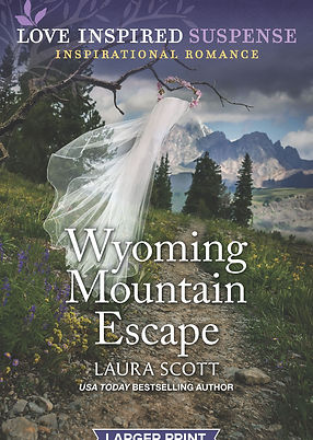 Wyoming Mountain Escape Cover.jpg
