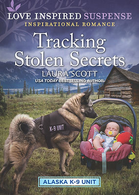 Tracking Stolen Secrets Cover.jpg