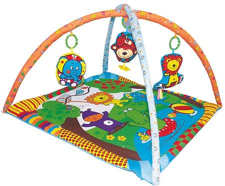 Happy Playyard Playgym