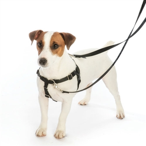 """2 Hound Design 5/8"""" Patented Freedom No-Pull Harness (Small, Kelly Green)"""