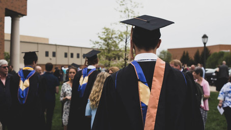 What are the differences between the honours and specialization programs?