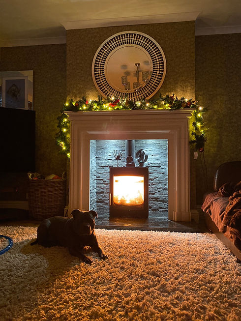 Solid fuel stoves for sale.jpg