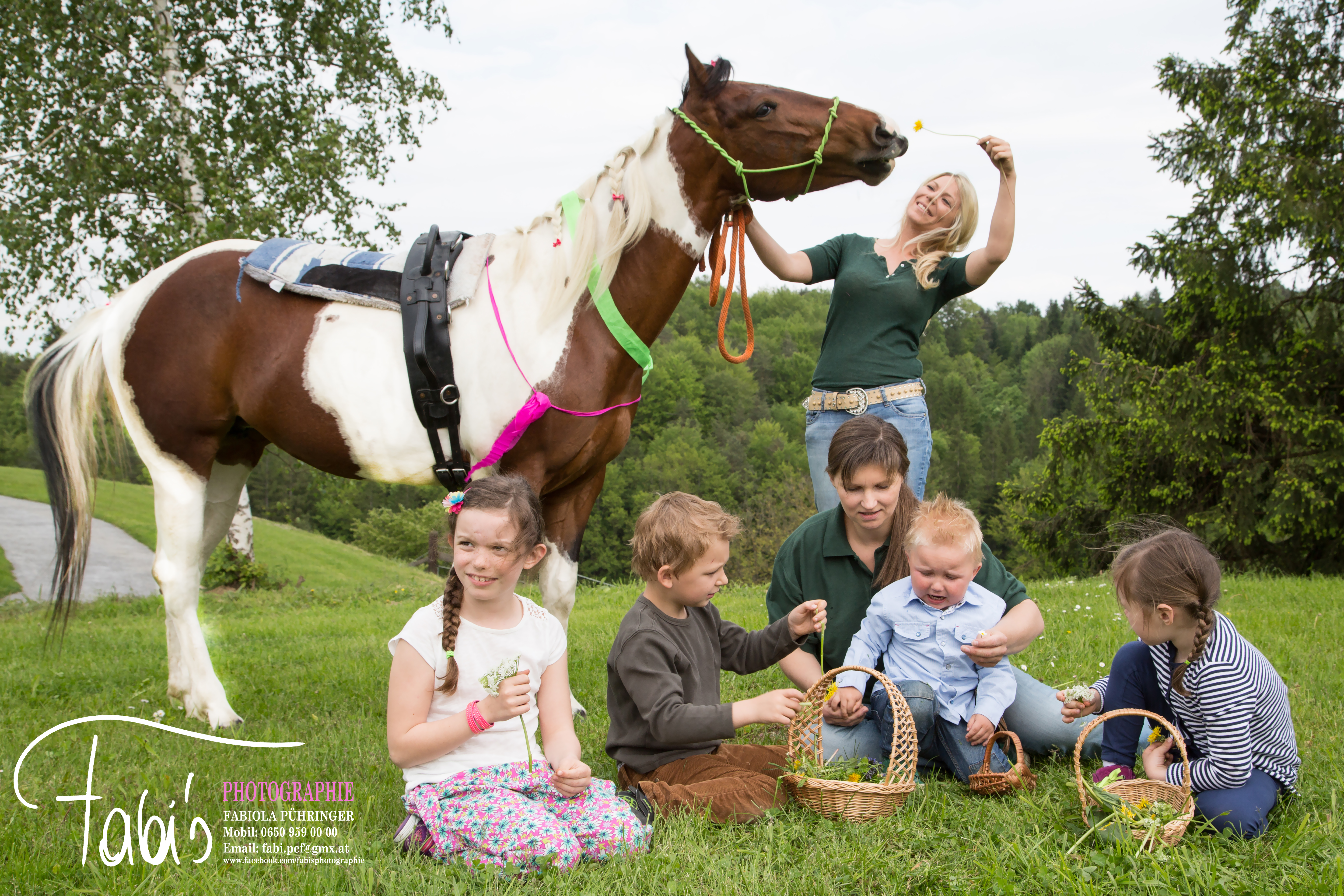 www.pupacher-horses.at