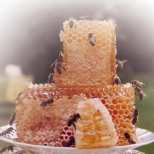 Сотовый мёд (Марий Эл)