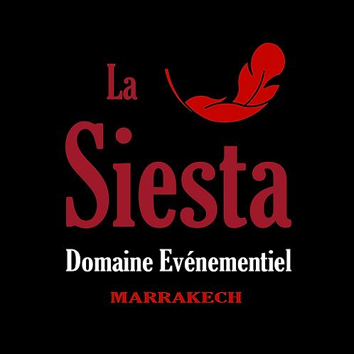 logo STA.png