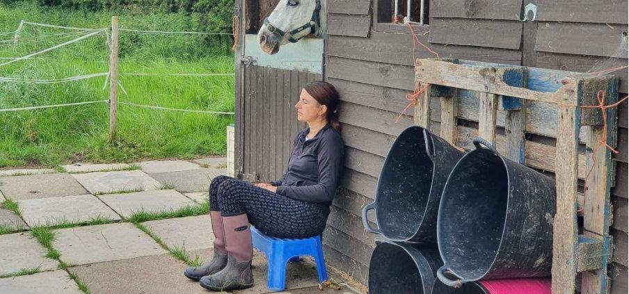 Lisa Willow Holistics horse 3.jpg