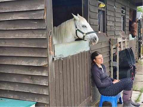 Lisa Williow Holistics horse 2 1.jpg