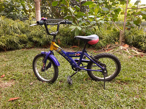 "16"" Children Bike (blue)"
