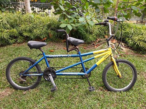 """20"""" Tandem Bike"""