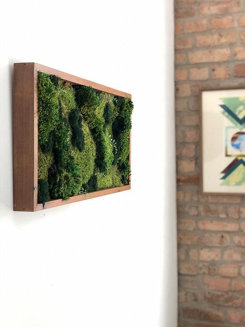 Rectangle Moss Art