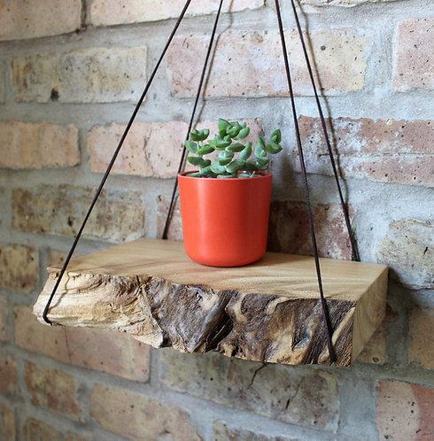 Walnut or Elm - Hanging Live Edge Shelf