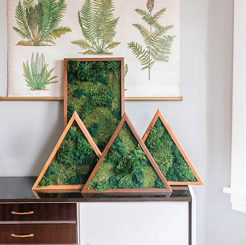 Triangle Moss Wall Art