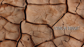 Living in Drought?