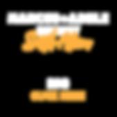 Equip_Visual Language_2019_BIO-27.png