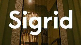 Sigrid Sucker Punch Tour 2019 - London