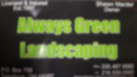 alwaysgreen.jpg