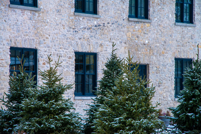 Snow dusted trees near the Elora Foundry and Elora Mill