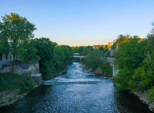 Take a peek at early mornings along the Grand River (Fergus Ontario (GALLERY)