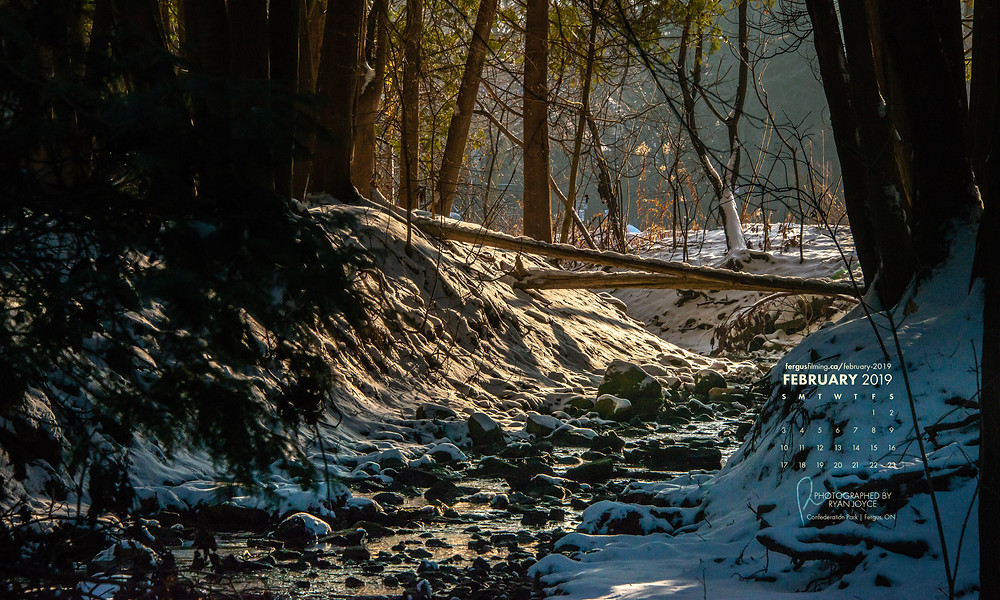 A winter morning in Fergus Ontario, a small babbling creek surrounded by fresh snow and trees