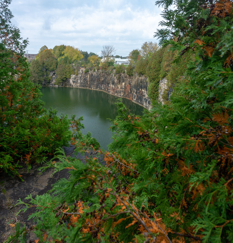 Elora quarry framed by fall trees