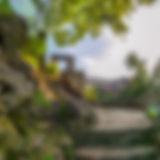 Fergus_Templin_Gardens_Summer_Morning_01