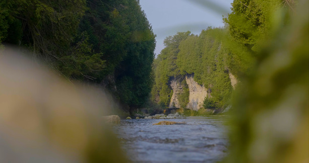 A long look down the Grand River in the Elora Gorge