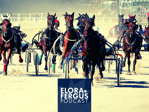 How Grand River Raceway is supporting the Elora Fergus community during COVID? (VIDEO)