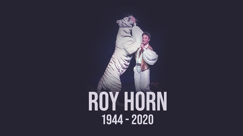 Roy Horn passes from complications of COVID-19.  Seen in the picture with white tiger