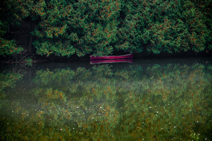A canoe tucked away along the Grand River