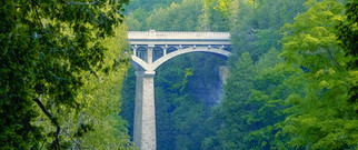 Elora Gorge open spandrel arch bridge close up with trees in the foreground