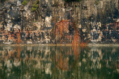 Close-up of the Elora quarry limestone walls